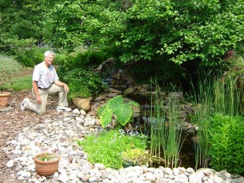 diy-pond-with-creek
