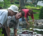 planting-up-the-pond