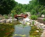 pond-with-bridge