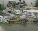 pond-with-well