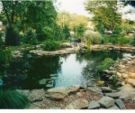 swimming-pool-conversion