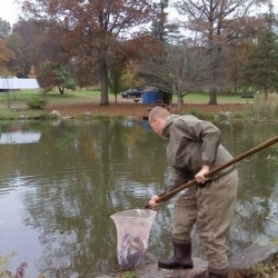 trout-stocking